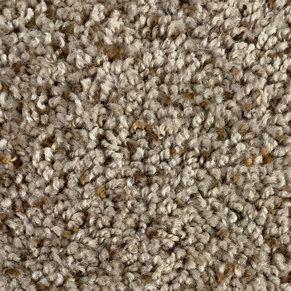 In-stock carpet - Beehive